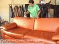 muebles-de-cuero-mantenimiento-2.JPG