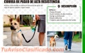 Correa De Paseo De Alta Resistencia Para Perros Grandes