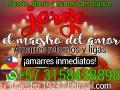 RECUPERE SU AMOR DE INMEDIATO AMARRES DE AMOR EXPRESOS. MAESTRO JORGE +57 315 843 8896