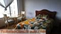 Renta de habitaciones ( sector prensa)